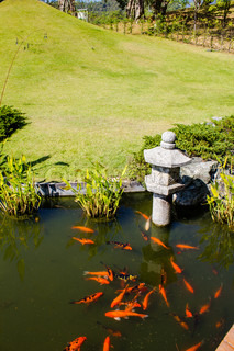 Japanese garden stock photo colourbox for Japanese garden san jose koi fish