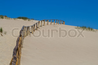 Fence in dunes