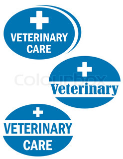 three sign of veterinary care
