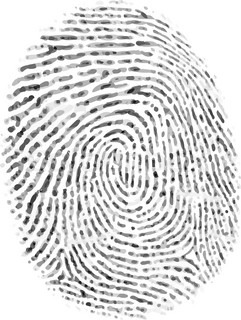 Vector isolated indistinct fingerprint on white background