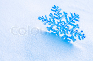 Snowflake on the snow