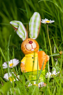 easter bunny outdoor in spring