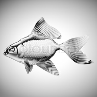 Silver fish with fins and scales over gradient gray for List of fish with fins and scales