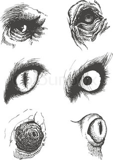how to draw monster eyes