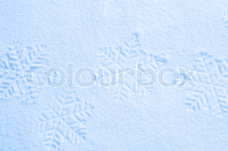Snowflake on the snow.