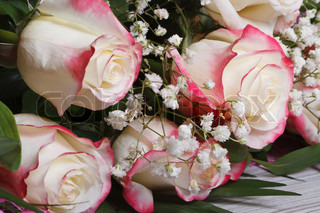 Bouquet of delicate white roses with pink petals edged ...