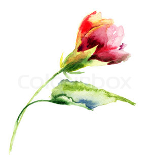 Stylized flower watercolor illustration