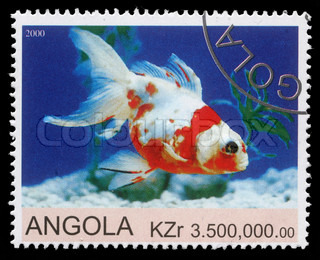Stamp printed by Angola shows Goldfish