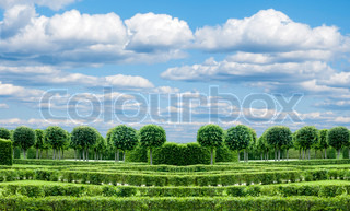 panorama Park with exactly topiary trees and lawn