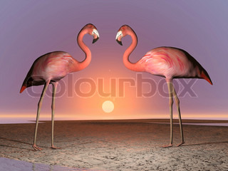 Flamingos date - 3D render