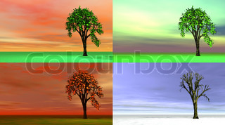 Four seasons trees - 3D render