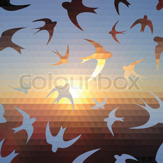 swallow silhouette on triangle sky and sun