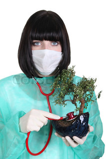 Female doctor with plant