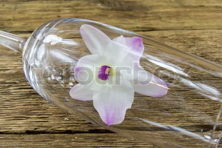 Orchid groceries on wooden background