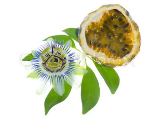 passionflower with cut maracuya and passion fruit on a Leaf, isolated