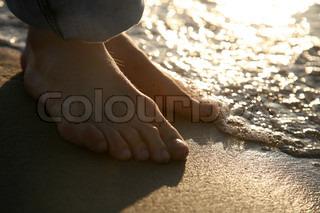 Image of 'sandy beach, close up, summer'