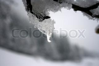 Image of 'melt, snow, melting'