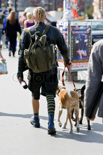 A backpacker walking with his dogs