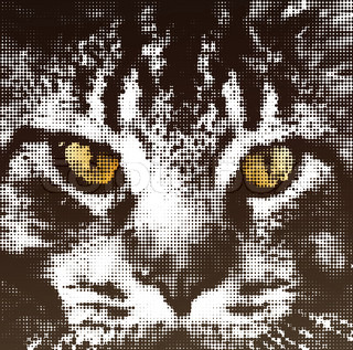 Muzzle cat maine coon in halftone style. Vector