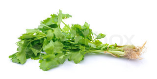 Celery on white background