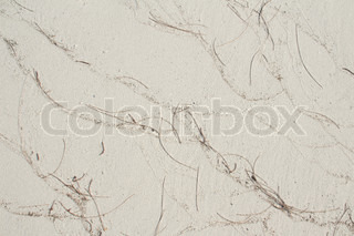 White Beach Sand Texture With Pine Leave