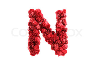 Red roses letter N, isolated on white background