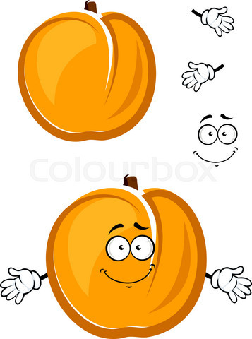 Cartoon cute apricot fruit character with fuzzy skin