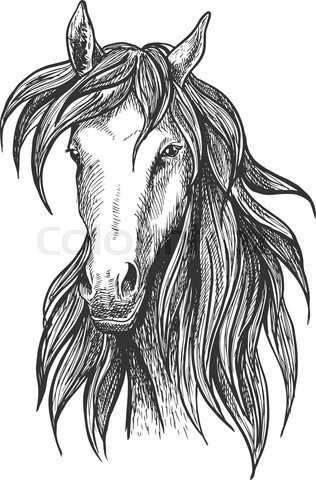 Athletic thoroughbred bay racehorse sketch symbol